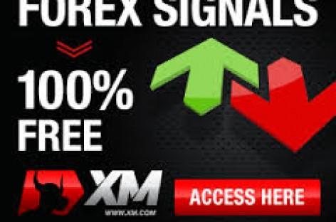 Xm forex signal