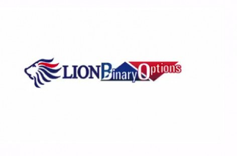 Lion Binary Live Contest 2015 Challenge – Hiroseuk