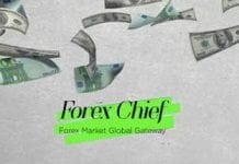 forexchief live contest